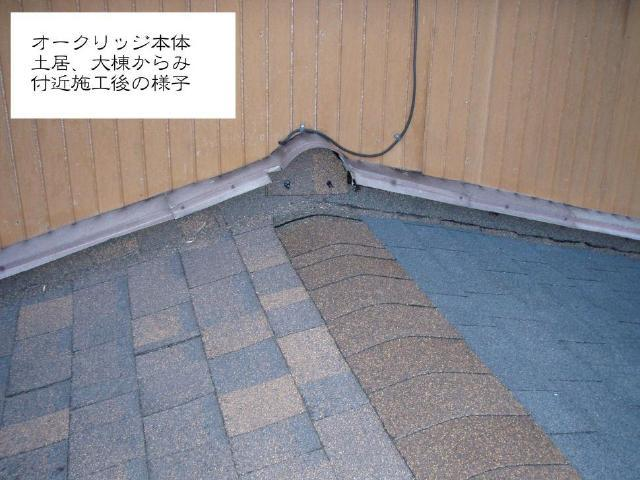 250612 .kaba-kouhou Usama02.jpg