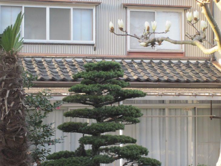 金沢市 U様邸 貸家屋根修理施工事例
