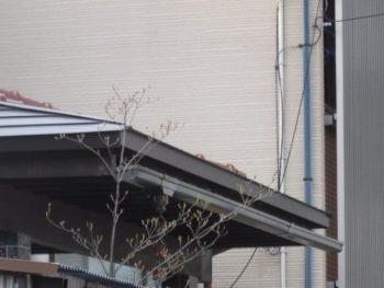 金沢市 Y様邸 屋根板金修理施工事例